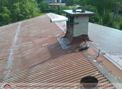 malowanie dachów firma dachmal