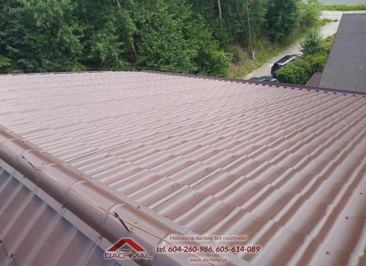 Malowanie dachu Osiek